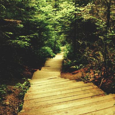 Twin Falls - Vancouver, B.C.
